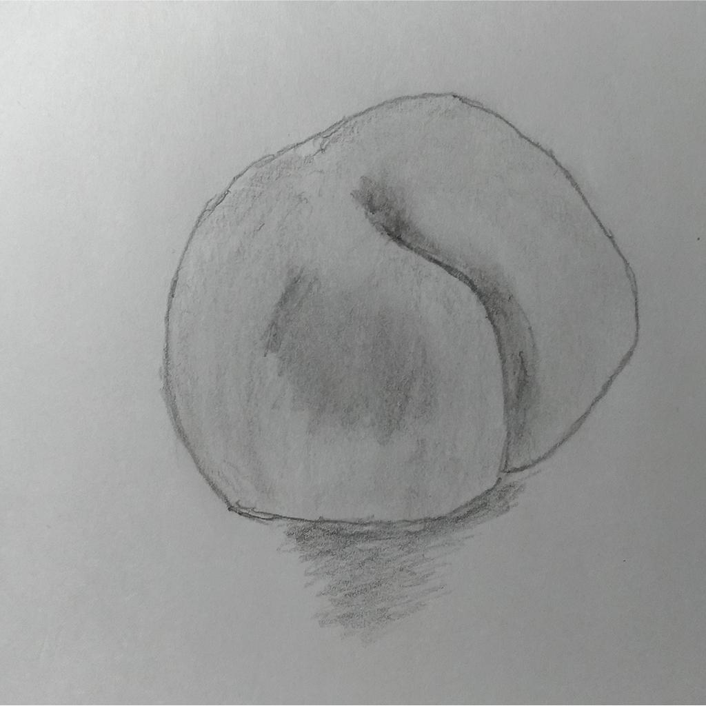 桃のデッサン