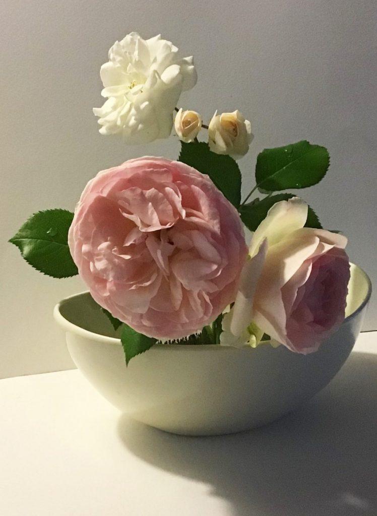 【ピリカアートスクール】薔薇のデッサン 添削アドバイス